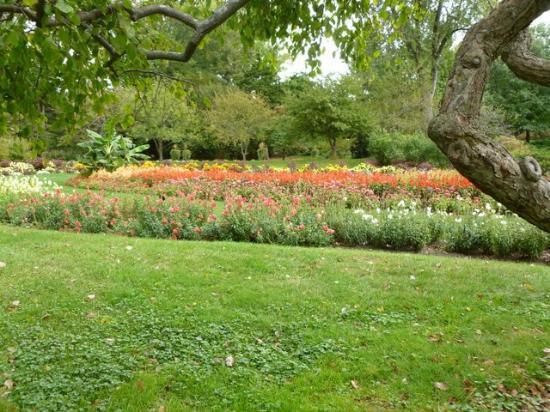 Dow Gardens: Dow Garden Flower Bed