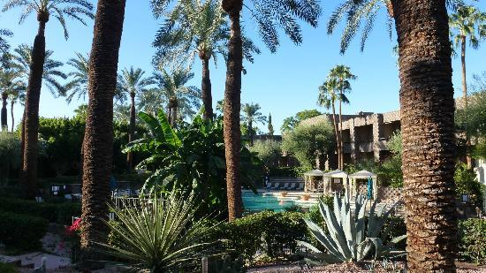 DoubleTree Resort by Hilton Paradise Valley - Scottsdale: Pool area of resort.