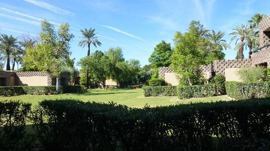 ‪‪DoubleTree Resort by Hilton Paradise Valley - Scottsdale‬: View of gardens from my room.‬