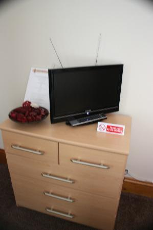 Eden's Rest Bed & Breakfast: Flat screen TV
