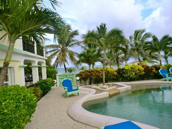 Oasis del Caribe: Pool/Ocean View