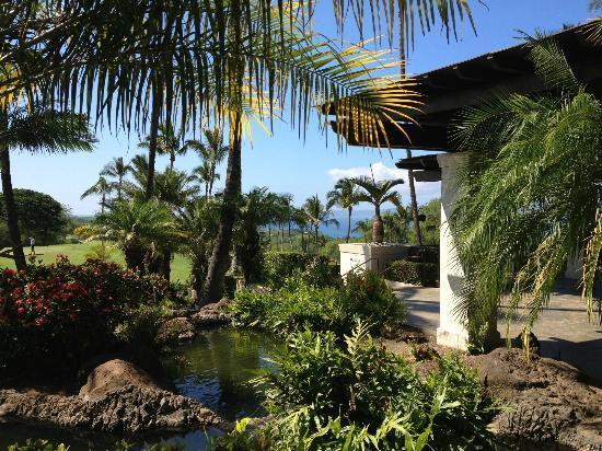 Open Eye Tours & Photos: Beautiful Maui