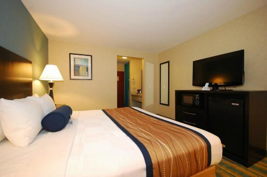 Best Western Plus Berkshire Hills Inn & Suites: Deluxe King bed