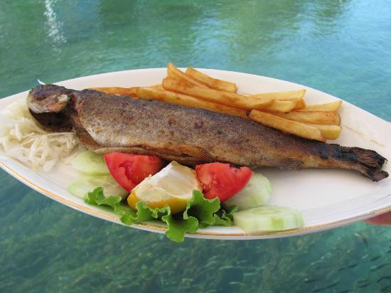Top 10 restaurants in Struga, Republic of Macedonia