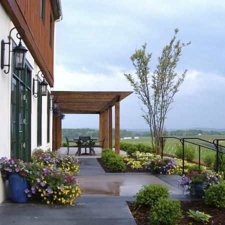 Fishersville, VA: Barren Ridge Vineyards