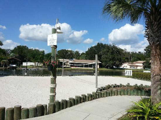Plantation on Crystal River: Volleyball court