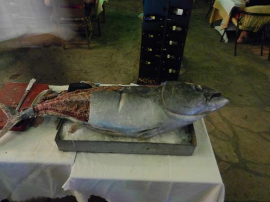 Millennium Park Hotel: The tuna at the Ottoman House!