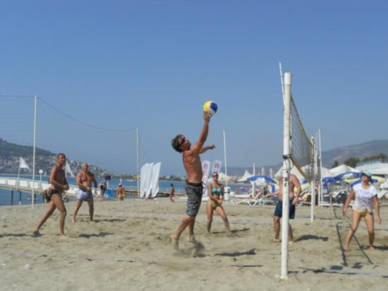Millennium Park Hotel: Beach volleyball..