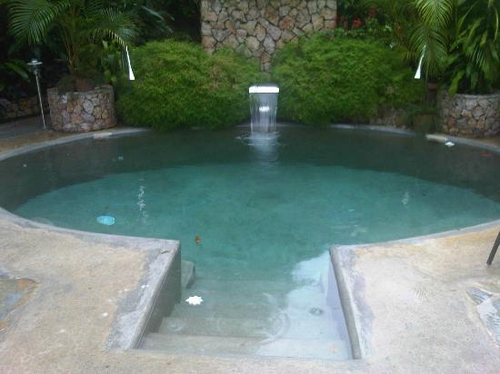Cariguana Spa: Piscina de Agua Natural