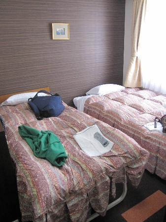 Hotel Shin Osaka: Studio twin room