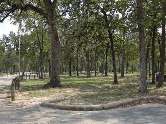 Memorial Park Houston Tx Address Phone Number Free