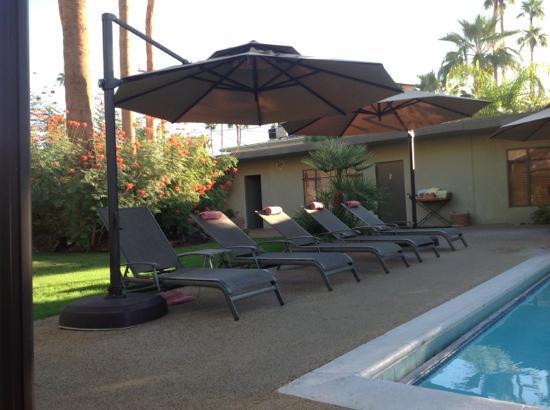 Desert Riviera Hotel: pool oasis