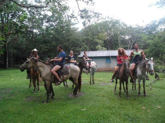 Kibbutz de Rita Bed and Breakfast : horse back riding