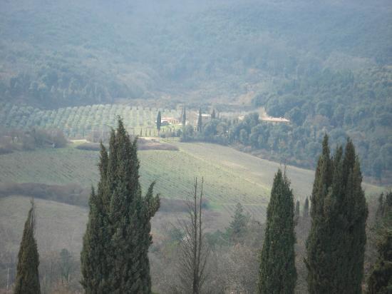 Tenuta Torciano: Tuscany