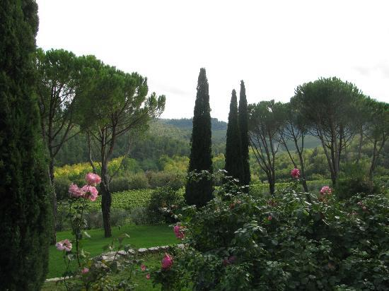 Castello di Spaltenna Exclusive Tuscan Resort & Spa: view from breakfast area