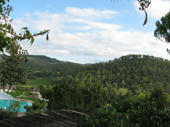 Castello di Spaltenna Exclusive Tuscan Resort & Spa: Pool and hills