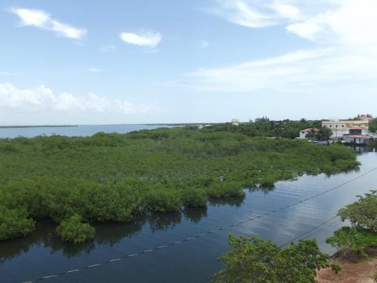 Silver Leaf Villa and Cabana: Roof View