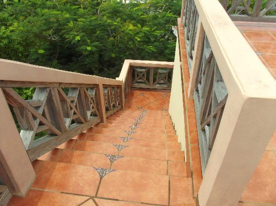 Silver Leaf Villa and Cabana: coming down from the roof