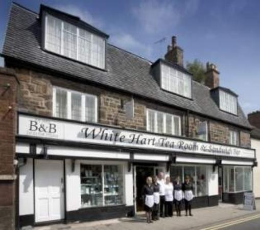 The White Hart B&B: Best cakes in town