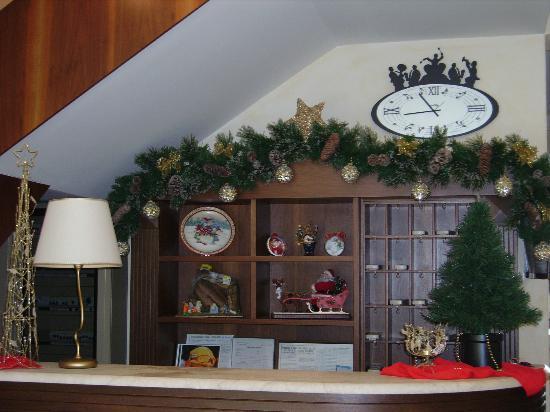 Hotel Acquamarina: Addobbi Natale