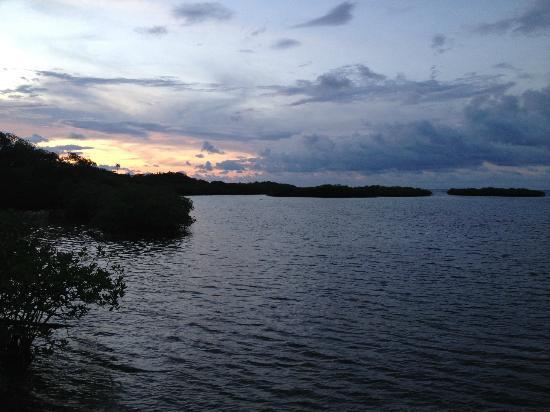 Coral Lodge: Beautiful sunsets