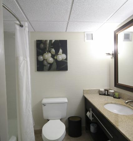 Embassy Suites by Hilton Oklahoma City Will Rogers Airport: In-Suite Restroom