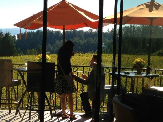 Schweiger Vineyards: Thank you James for taking the pic!!