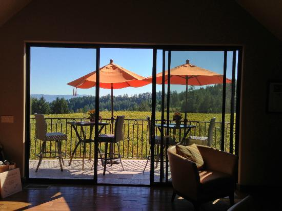 Schweiger Vineyards: the patio