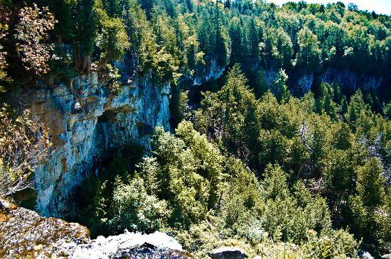 Eugenia Falls Conservation Area: View from the top of the falls