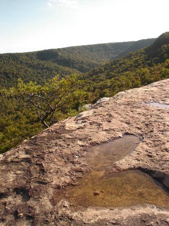South Cumberland State Park: View from above Stone Door