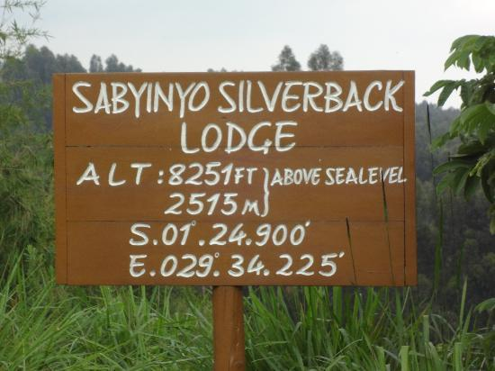 Sabyinyo Silverback Lodge: its high up