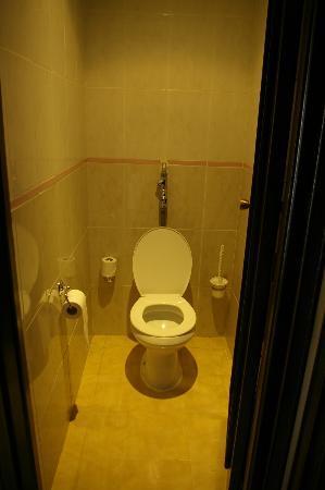 Marhaba Palace Hotel: Toilet Room 313