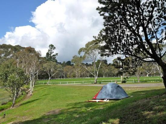 Katoomba Falls Tourist Park: Camping grounds