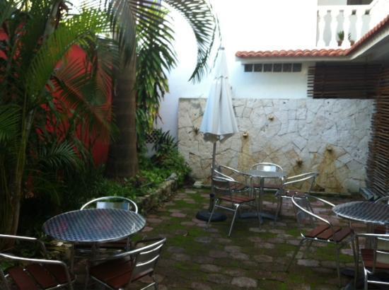Flamingo Hotel : Courtyard