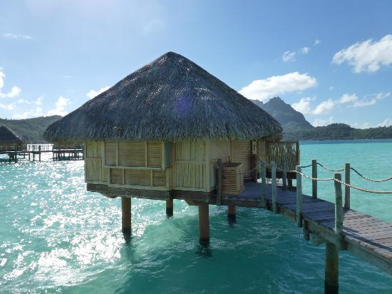 ‪بورا بورا بيرل بيتش ريزورت آند سبا: Over water bungalow