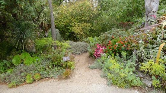 San Francisco Botanical Garden: Botanical Garden   Garden Of Fragrance