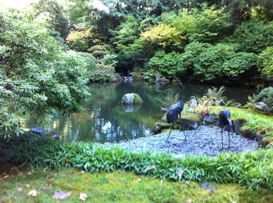 Beautiful landscaping picture of portland japanese for Portland japanese garden koi
