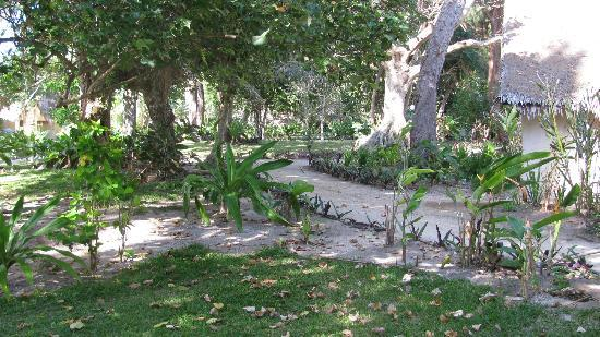 Erakor Island Resort & Spa: The resort- sand paths