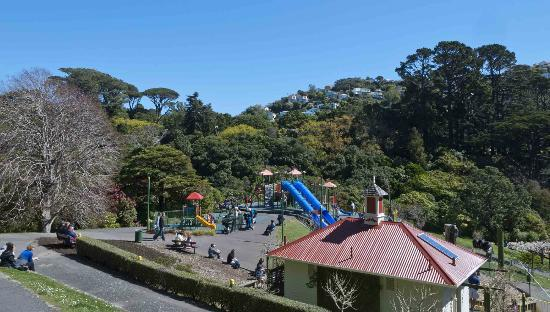 Wellington Botanic Garden: Play time.