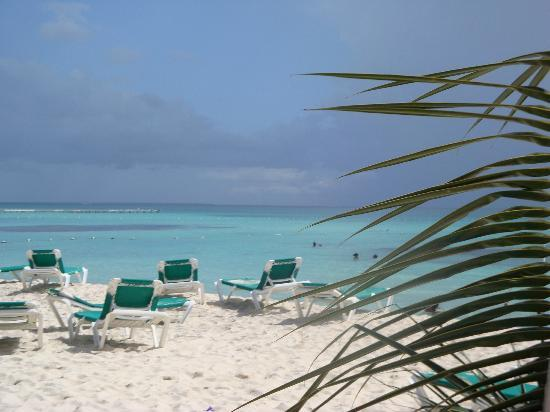 Viva Wyndham Dominicus Beach: By the Sea by the Beautiful Sea