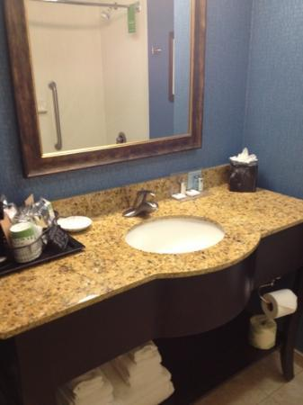 Hampton Inn Jacksonville/Ponte Vedra Beach-Mayo Clinic Area: sink