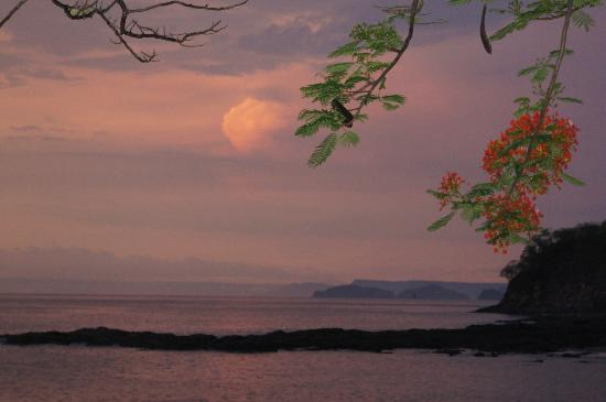 Bahia Pez Vela Resort: Sunset