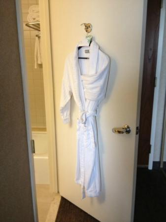 The Westin Los Angeles Airport: Robe, nicely sized but a bit rough