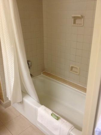 The Westin Los Angeles Airport: view of the bath tub and elegant leaf shaped soap