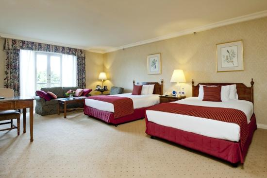 Sir Stamford at Circular Quay Hotel Sydney : Deluxe Twin Room