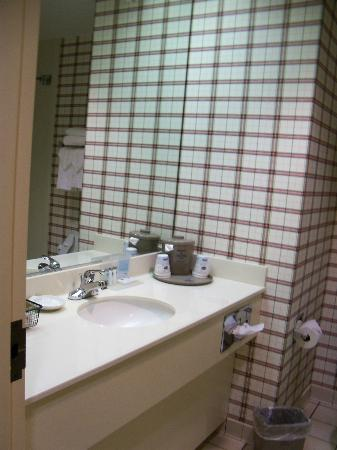 Hampton Inn Mount Airy: Bathroom vanity