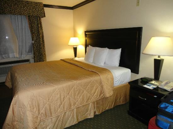 Avenue Hotel: King Size bed