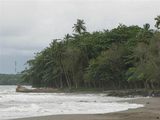Hotel Caribbean Coconut照片