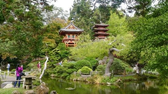 Japanese tea garden at golden gate park 1 picture of - Japanese tea garden san francisco ...