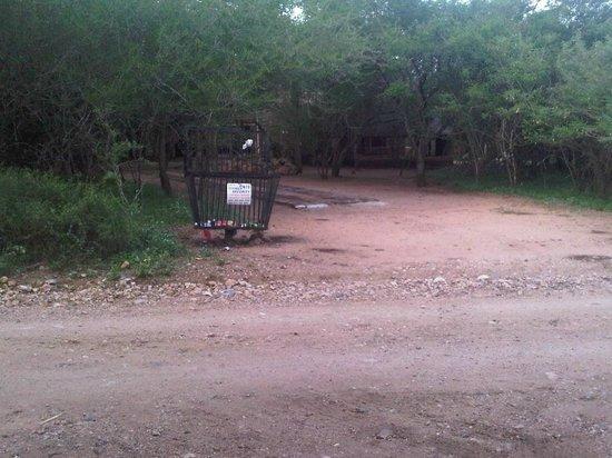 Mvuradona Safari Lodge: Riverview as promised!!!!!! more like dirt road
